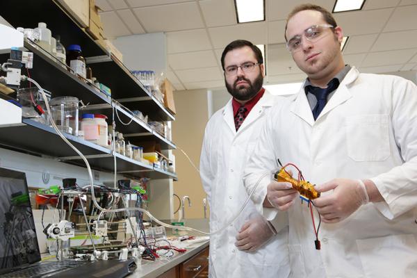 bio printing, undergrad, research, cell, sugar, tissue, organ, 3d printing