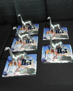 AMUG DINO awards -Grimm, Alexander, Hoppe, Bauman, Bordner