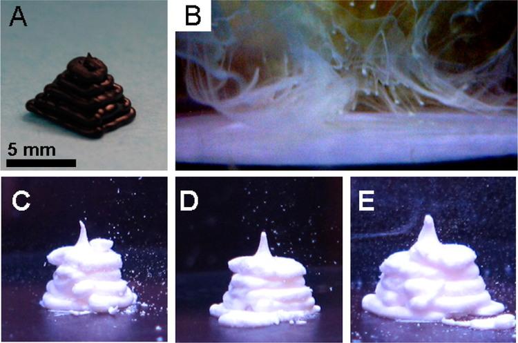 3D printing, DNA, Material, glue