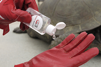 Can A Biopolymer That Restores Football Glove Stickiness Make The