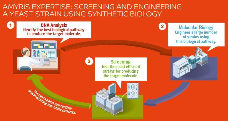 Designer Yeast Makes Renewable Jet Fuel > ENGINEERING com