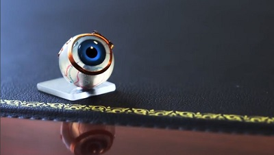 The bionic eye essay